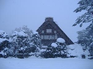 snowcoveredwadake